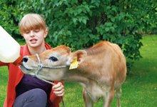 Ramsteinerhof - Unsere Tiere