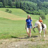 Ramsteinerhof_Pony_02