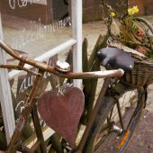 Altes Fahrrad mit Blumen